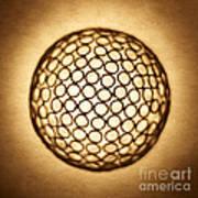 Orb Web Poster by Tony Cordoza