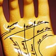 Palmistry Poster by Pasieka