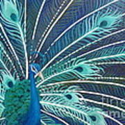 Peacock Poster by Estephy Sabin Figueroa