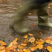 Person In Motion Walks Through Puddle Poster by John Short
