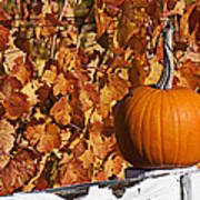 Pumpkin On White Fence Post Poster by Garry Gay