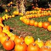 Pumpkin Patch Path Poster by Carol Groenen
