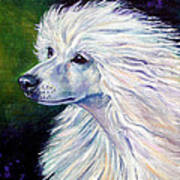 Pure Poetry - Chinese Crested Poster by Lyn Cook
