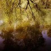 Reflection Poster by Joana Kruse