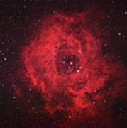 Rosette Nebula Poster by Pat Gaines