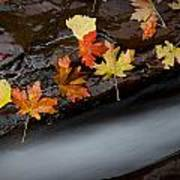 Rushing Autumn Poster by Jim Speth