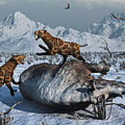Sabre-toothed Tigers Battle Poster by Mark Stevenson
