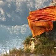 Sea Breeze Butterfly Poster by Daniel Eskridge