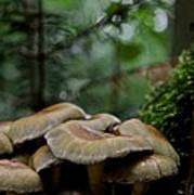 Sea Of Heads Poster by Odd Jeppesen