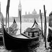 Seagull From Venice - Venezia Poster by Bronco - J. Heiligensetzer