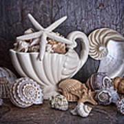 Seashells Poster by Tom Mc Nemar