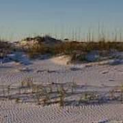 Seaside Dunes 4 Poster by Charles Warren
