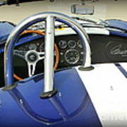 Shelby Signed Cobra Poster by Karyn Robinson