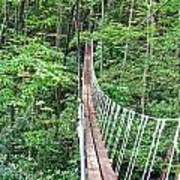 Sky Bridge 2 Poster by Aimee L Maher Photography and Art Visit ALMGallerydotcom