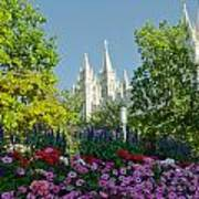 Slc Temple Flowers Poster by La Rae  Roberts