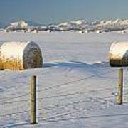 Snow Covered Hay Bales In A Snow Poster by Michael Interisano
