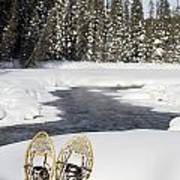 Snowshoes By Snowy Lake Lake Louise Poster by Michael Interisano