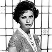 Sophia Loren, Circa 1950s Poster by Everett