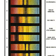 Spectra Chart, Blood Samples, 1894 Poster by Science Source