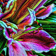 Stargazer Lilies Up Close And Personal Poster by Bill Tiepelman