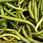 String Beans Poster by Tanya Harrison