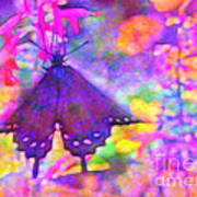 Swallowtail Poster by Judi Bagwell