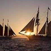 Tall Ships At Sunset Poster by Cliff Wassmann