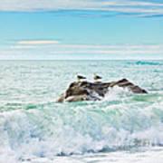 Tasman Sea Poster by MotHaiBaPhoto Prints