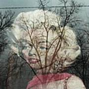 The Ghost Of Norma Jean Poster by Todd Sherlock