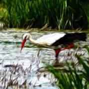 The Stork Poster by Stefan Kuhn