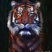 Tiger Tiger Poster by Michelle Wrighton