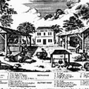 Tobacco Plantation, C1670 Poster by Granger