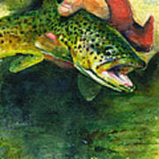 Trout In Hand Poster by John D Benson