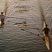 Two Rowers Paddle Down The Charles Poster by Tim Laman