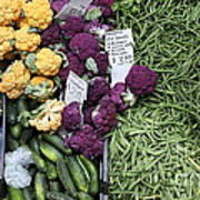 Variety Of Fresh Vegetables - 5d17900-long Poster by Wingsdomain Art and Photography