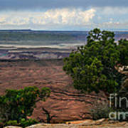 View Of Canyonland Poster by Robert Bales