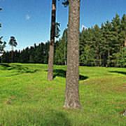 Viking Mound Field Poster by Jan Faul