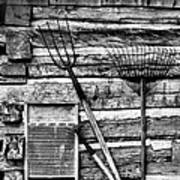 Vintage Garden Tools Bw Poster by Linda Phelps