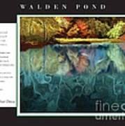 Walden Pond Poster by David Glotfelty