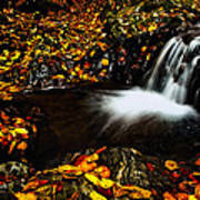 Waterfall Poster by Irinel Cirlanaru
