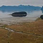 Wild Alaska Coast Poster by Mike Reid