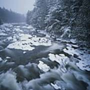 Winter View Of The Ausable River Poster by Michael Melford