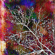 Winter Wishes Poster by Judi Bagwell