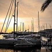 Yachts At Sunset Poster by Carlos Caetano