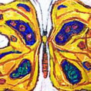 Yellow Butterfly Poster by Kazuya Akimoto