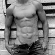 Male Abs Poster by Mark Ashkenazi