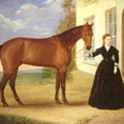Portrait Of A Lady With Her Horse Poster by English School