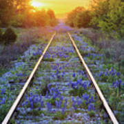 Blue Bonnets On Railroad Tracks Poster by Jeremy Woodhouse