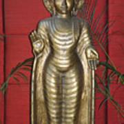 Buddha 1 Poster by Vijay Sharon Govender