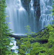 Lower Proxy Falls Poster by Greg Vaughn - Printscapes